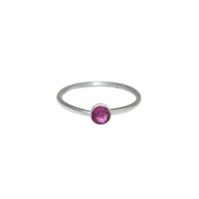 Rook Clicker Earring with Ruby gemstone - Surgical Steel (SKU: PN0108SSH)