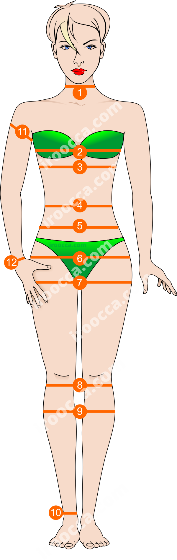Bodys Front